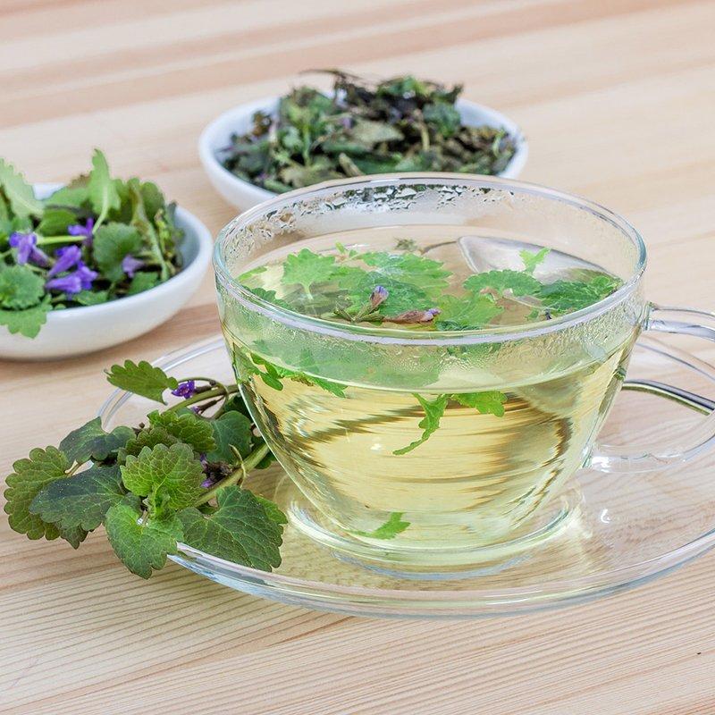 10 Amazing Benefits of Nettle Tea